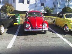 The Chickenburger - Red VW Beetle 2004 Vw Beetles, Nova Scotia, Antique Cars, Red, Volkswagen Beetles, Vw Bugs, Vintage Cars, Rouge, Bubbles