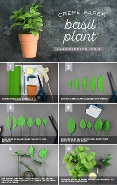 Easy Crepe Paper Basil Herb Plant With Just 6 Steps : Crepe paper basil plant tutorial Crepe Paper Flowers, Felt Flowers, Diy Flowers, Paper Crafts For Kids, Diy Paper, Fun Crafts, Paper Plants, Paper Flower Tutorial, Flower Crafts