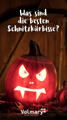 The 10 most common questions on the net about the pumpkin! Have fun while reading! Halloween Boo, Happy Halloween, Creative Crafts, Fun Crafts, Cute Pumpkin Carving, Pokemon Craft, Unicorn Crafts, Halloween Accessories, Chucky