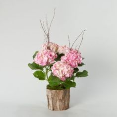 I'm going to do potted plants for centerpieces instead of cut flowers. hydrangea is a fave. Hydrangea Potted, Potted Plants, Butterfly Garden Party, Sustainable Wedding, Flower Quotes, Ikebana, Cut Flowers, Trees To Plant, Planting Flowers