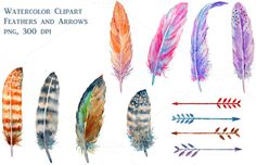 Check out Watercolor Feathers Clipart by Corner Croft on Creative Market