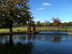 Box Hill Gardens is great for kids of all ages: duck pond, barbeques, 2 playgrounds - plus the 2014 upgrade added a professionally surfaced 1000m running track, basketball court and undercover seating. #ducks #bbq #park