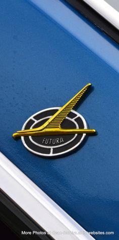 Falcon by http://dean-ferreira.artistwebsites.com/index.html