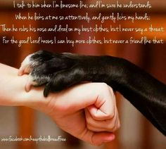 short poem about the importance of companionship of #dogs