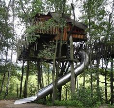 Tree House with a slide