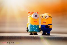 Cute Minions, Minion Pictures, Boss Baby, Fake Friends, Shades Of Yellow, Toys Photography, Something Beautiful, Piggy Bank, Cute Wallpapers