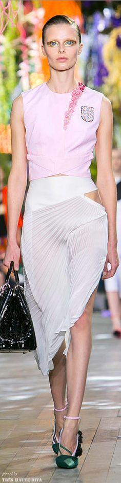 Paris FW Christian Dior Spring / Summer 2014  | The House of Beccaria
