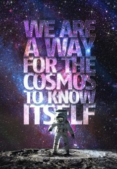 We are a way for the cosmos to know itself.
