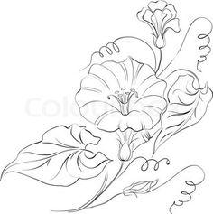 bindweed tattoo - Google Search