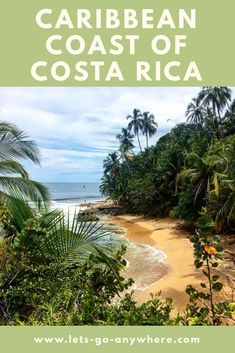 Your Guide to the Caribbean Coast of Costa Rica | Let's Go Anywhere Puerto Viejo