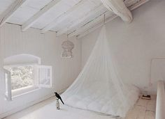 Airy and light. I'm not sure mosquito nets should be so pretty.