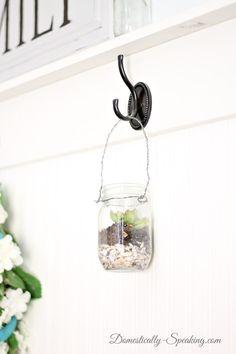 mason jar, succulents, seashells, summer, hanging, pottery barn