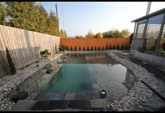 A Natural DIY Swimming Pool From Start to Finish | Photos | HGTV Canada