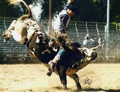 bull riders are automatically hot... real men.
