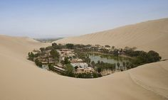 DESERT OASIS: The mystical oasis town that exists in the middle of barren desert