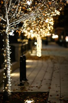 Photography City Lights Christmas Time 40 Ideas For 2019 Merry Little Christmas, Winter Christmas, Christmas Lights, Christmas Time, Christmas Decorations, Holiday Lights, Twinkle Lights, Twinkle Twinkle, Bokeh Photography