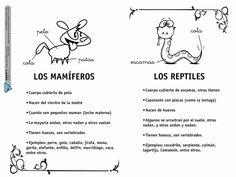 Álbum - Google+ Elementary Schools, Science, Album, Comics, Google, Montessori, Spanish, Study, Sign