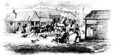 Arrival of Geelong Mail, Main Road, Ballarat 1855