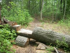 Awsome idea MTB trail