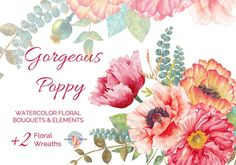 Gorgeous Poppy Watercolor Clipart by AurAandTheCat on @creativemarket
