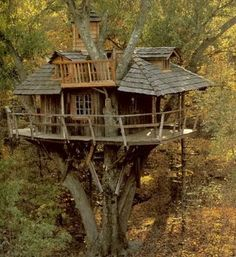 From simple tree house plans for kids to the big ones for adult that you can live in. If you're looking for tree house design ideas. Find and save ideas about Tree house designs. Beautiful Tree Houses, Cool Tree Houses, Beautiful Homes, Beautiful Places, Garden Cottage, In The Tree, Big Tree, Play Houses, Big Houses