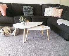 Table, House Styles, Apartment Style, Furniture, Interior, Home Decor, House Interior, Coffee Table, Kmart Decor