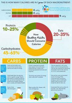 Calories in Macronutrients