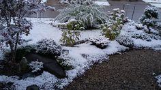 House Entrance Path House Entrance, Paths, My House, Christmas Wreaths, Backyard, Japanese, Holiday Decor, Projects, Design