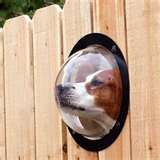Interesting. Would this keep dogs from barking, if they could see, or would they bark more?