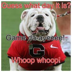 Game Day Baby!!!! Go DAWGS
