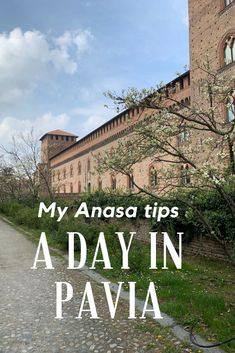A day in Pavia – travel Beautiful Castles, Beautiful Beaches, Equestrian Statue, Jeju Island, Galapagos Islands, Best Hikes, City Photography, Covered Bridges, Plan Your Trip