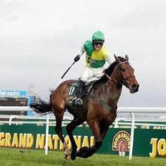 Irish-trained Hedgehunter ridden by Ruby Walsh and trained by Willie Mullins wins the 2005 Grand National. Horse Fly, Horse Racing, Race Horses, Horse Behavior, Freebies Uk, Cold Hard Cash, Sport Of Kings, Grand National, Sports Betting