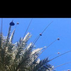 Birds nest Mauritius, Utility Pole, Nest, Birds, Building, Travel, Nest Box, Viajes, Buildings