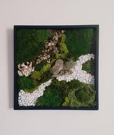 Bring the beauty of nature with this original moss wall art. This unique blend of preserved mosses and lichens. Bring a relaxing and meditative feeling into your living space or work space with this wall garden, the perfect addition for an urban space! Moss Wall Art, Moss Art, Frames On Wall, Framed Wall Art, Wall Collage, Island Moos, Moss Decor, Fleurs Diy, Inspirational Wall Art