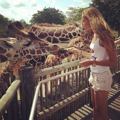 Feed giraffes.  WANT TO GO TO WILD ADVENTURES IN VALDOSTA TO FEED THE GIRAFFEES