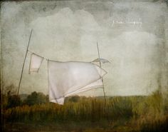 On the Eighth Day by jamie heiden, via Flickr
