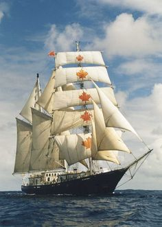 S/V Concordia - a Canadian owned ship that operated a study afloat program, sank off the coast of Brazil in 2010. All were rescued.