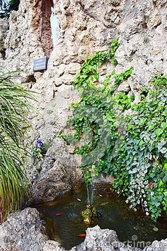 Small natural fountain close to a sanctuary in north Italy.