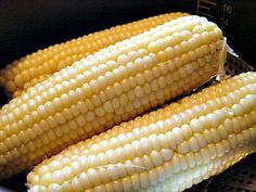 Pressure Cooker Corn on the Cob Recipe