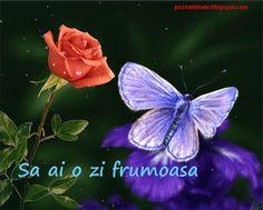 Imagini ,miscatoare,Gifuri,cu sclipici,stralucesc,blog,informatii,urari,mesaje,felicitari zi nastere: Trandafir,fluture,pana,cal,gif miscatoare