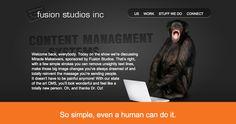 Content Management Systems - Fusion Studios Inc Studios, Management, How To Remove, Coding, Content, Website, Design, Programming