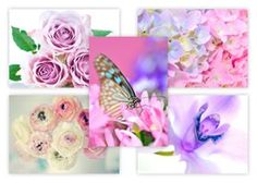 From 3.99:Afternoon Tea Postcards 10 Designs 5 Of Each Design Pack Of 50