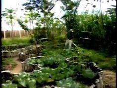Fazenda orgânica Nutrilite Amway - Globo Rural 2006 - completo.