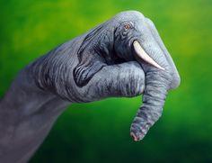 manos de elefante