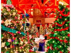 Things to do: Bucks Country TreeFest