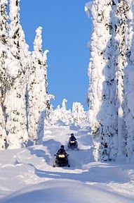 Snowmobile Safari in Lapland Winter Tours to Finland-This looks like where we go at the lake every winter in Willow ALaska! Winter Love, Winter Snow, Bergen, Winter Schnee, Finland Travel, Nature Sauvage, Lillehammer, Lapland Finland, Snow Fun