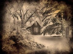This looks like a lovely place to spend the winter.