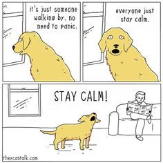 15 Hilarious Comics That Show What Animals Would Say If They Could Talk - The Trending Lab