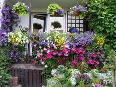 Aranżacja kwiatowa na balkon