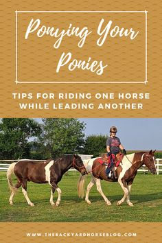 Ever tried to ride one horse while leading another? Read about one backyard horse-keeper's experience with ponying her ponies. Pick up some hints, tips and resources on the subject so you can safely give ponying a try with your own herd. Horseback Riding Tips, Horse Care Tips, Lord Of The Dance, Round Pen, Pay Attention To Me, Pony Horse, Frame Of Mind, Ready To Roll, Painted Pony